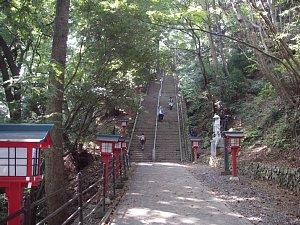 0160高尾山13.JPG