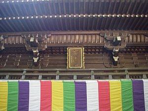 0163高尾山16.JPG