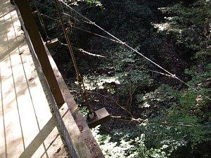 0179高尾山31.JPG