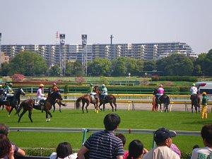 0802東京競馬場.JPG