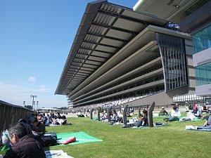 1344東京競馬場.JPG