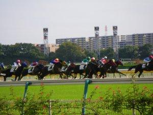 1346東京競馬場.JPG