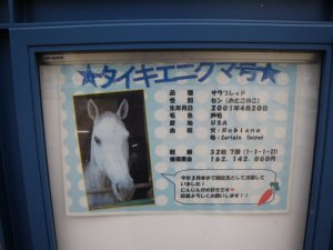 1373東京競馬場.JPG