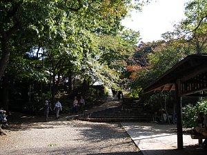 0169高尾山22.JPG