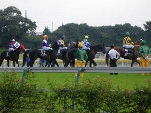 1347東京競馬場.JPG