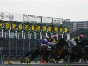 1348東京競馬場.JPG