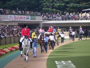 1376東京競馬場.JPG